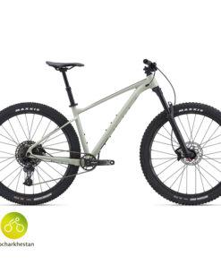 دوچرخه شهری فدوم 1